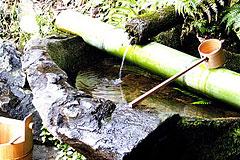 閼伽井の水